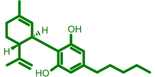 8 Different Types of CBD Products