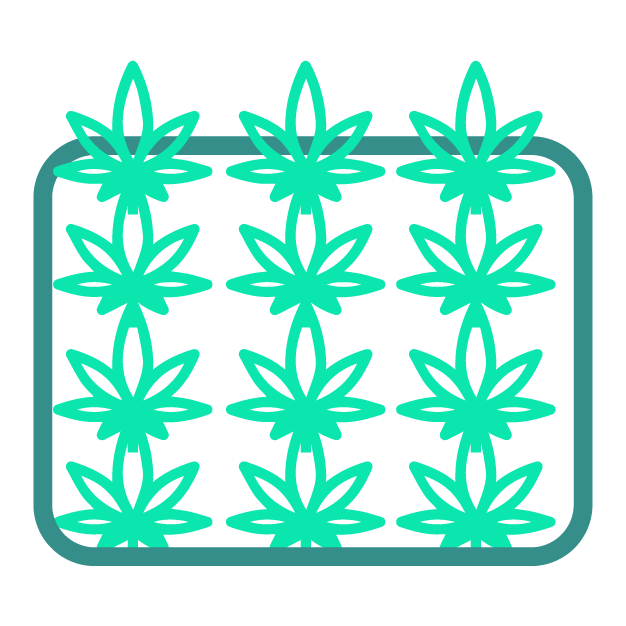 1_legally cultivate and grow hemp for legally extracting CBD with less than 0.3% THC