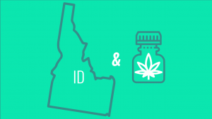 CBD in Idaho feat img 4